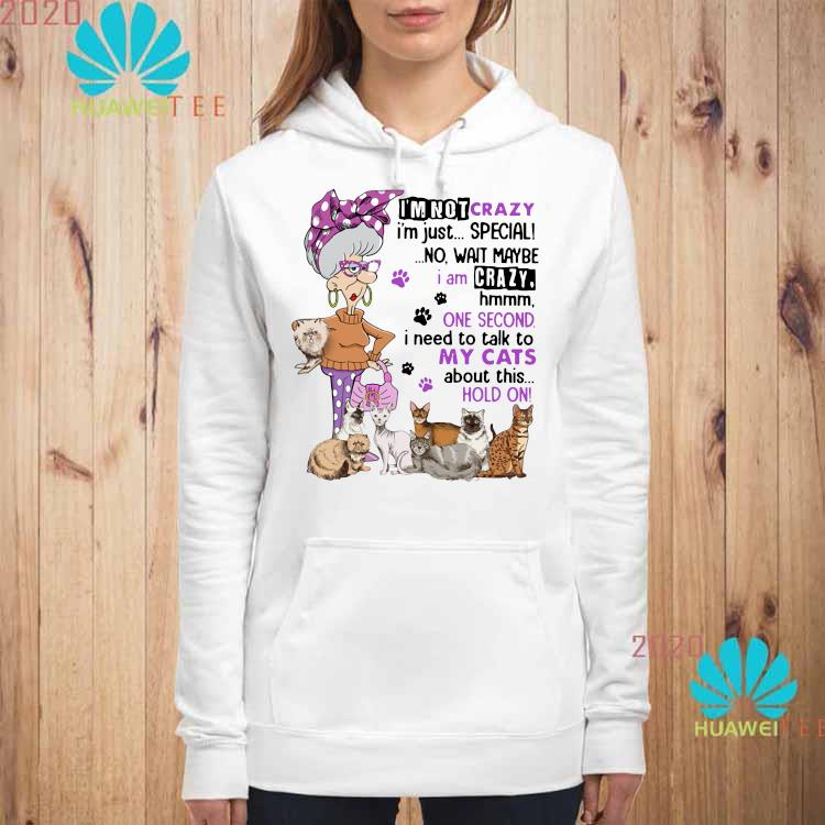 I'm Not Crazy I'm Just Special No Wait Maybe I Am Crazy Hmm One Second I Need To Talk To My Cats About This Hold On Shirt hoodie